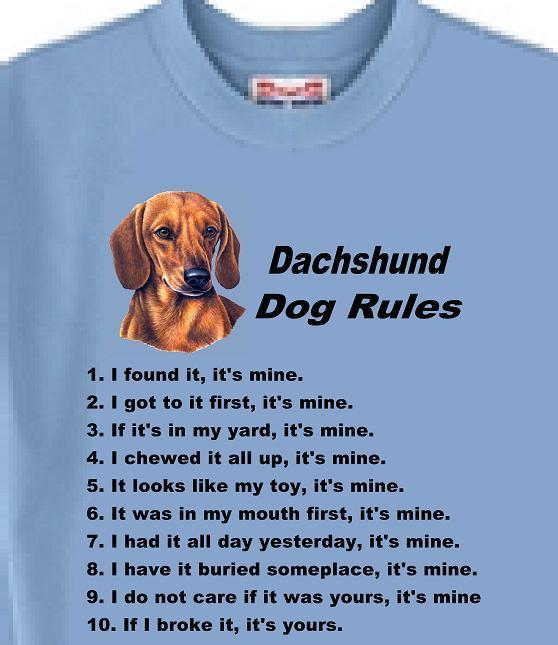 Dog T Shirt I/'m Not Single I Have A Jack Russell Adopt Animal Men Women # 5
